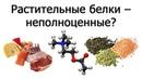 Растительные белки и незаменимые аминокислоты Нил Барнард