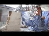 Carrara Robotics