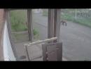 Лето 2018 г. Съёмка камерой наружного наблюдения, Советская 15. Предоставлено Стойчевым Филиппом