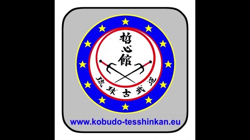 Bô-no-Kihon no. 4- Gedan-Uke Gedan-Nuki Gedan-Barai Shômen-Uchi Chûdan-Tsuki