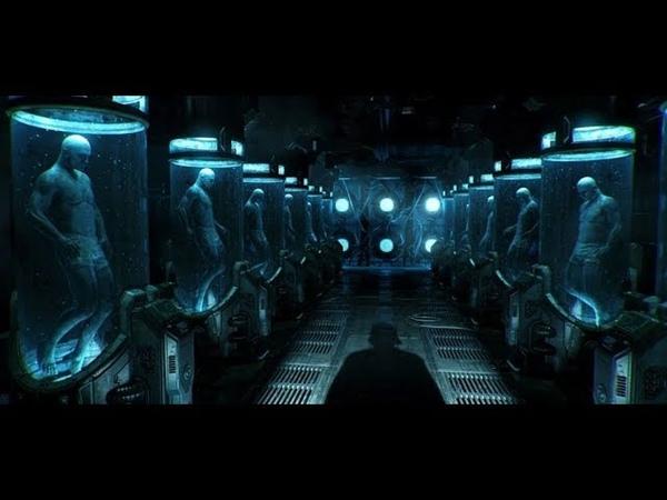 Проект клоны. Project clones