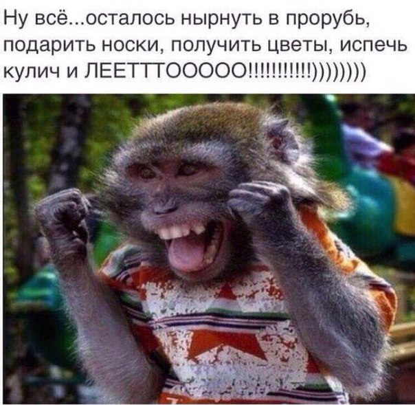http://cs543101.vk.me/v543101989/16935/P5YLJX6Gb8g.jpg
