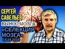 ВЫНОС МОЗГА 40 Селекция мозга 14 04 2018 Савельев С В