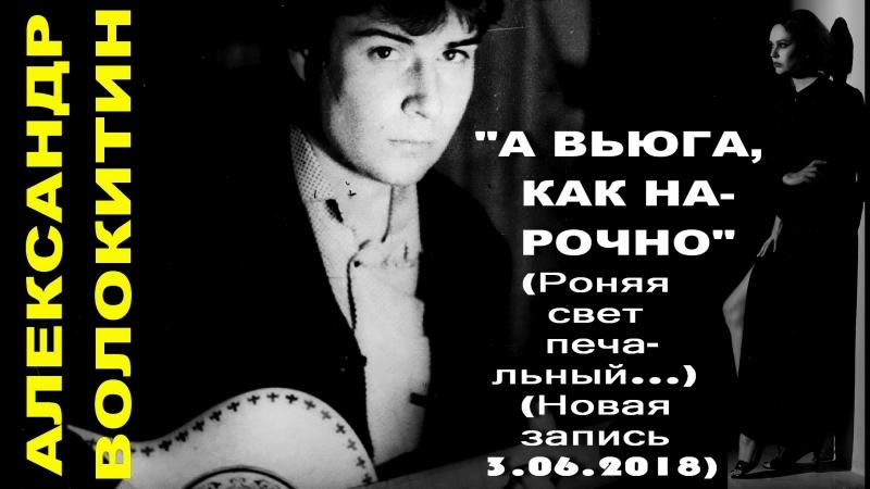 Александр Волокитин - А ВЬЮГА, КАК НАРОЧНО (Роняя свет печальный...) (Новая запись 3.06.2018)