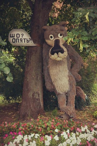 Дмитрий Сучай