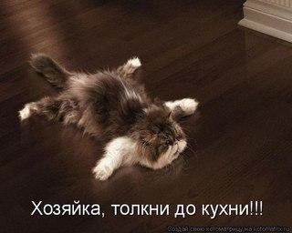 http://cs406426.vk.me/v406426735/2f2/0e9JUNeT3Jw.jpg
