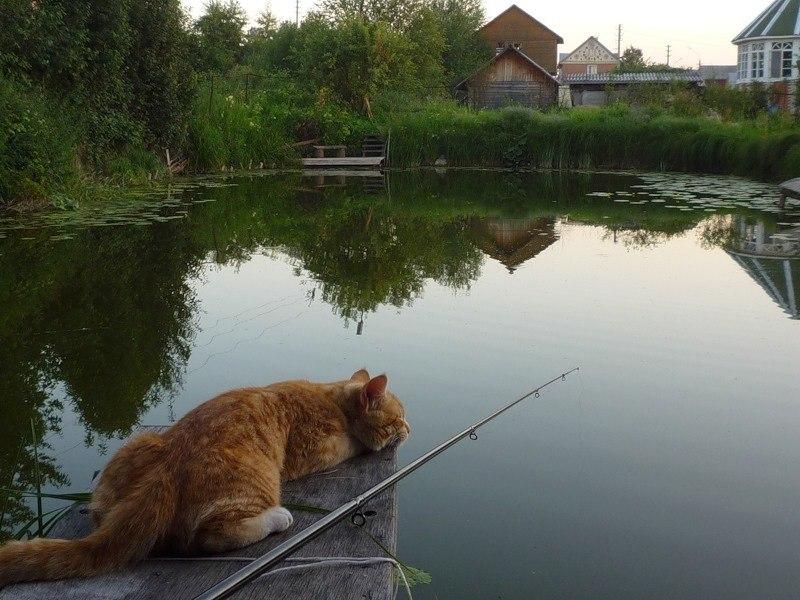 Соитие на рыбалке фото 43-85