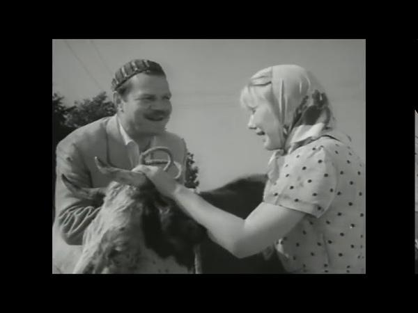 Суд идёт комедия Пуговкин, Крамаров, Филиппов 1963 год СССР HD