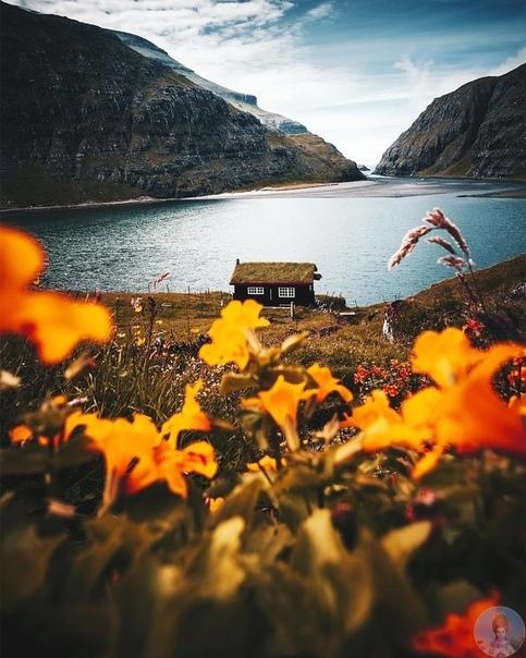 Осень - ты прекрасна!