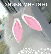 Алина Акимова, 26 сентября , Петрозаводск, id102341640