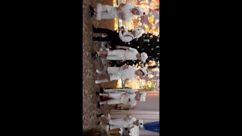 танец белых медведей 😂