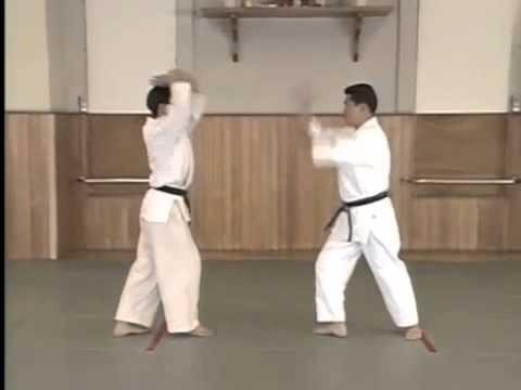 Yokomen Uchi Kote Gaeshi (1)
