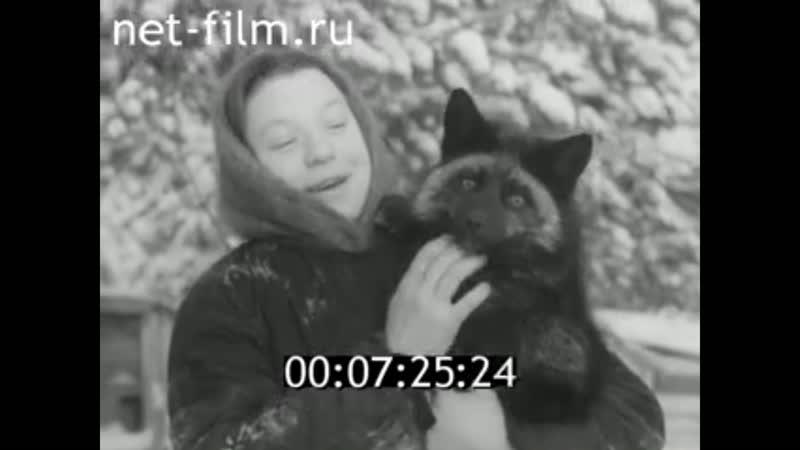 Наш край 1960 № 5- Звероферма