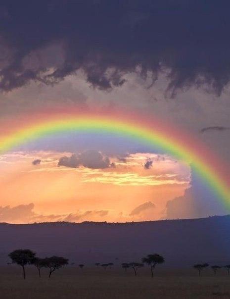 После дождя всегда приходит радуга, после слёз — счастье.