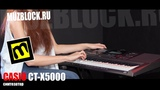 Casio - CT-X5000 - обзор - Harry Potter и Intouchables OST