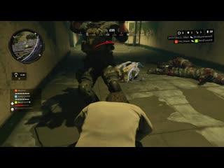 probably the best random blackout teammate i could have asked for. Black Ops 4
