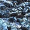 Тихие Камни