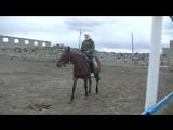 Юля на конюшне