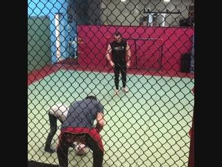 Мирко Крокоп и Сатоси Исии весело проводят время в перерыве от тренировок