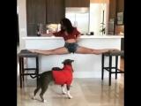 SLs Flexible girl doing oversplits