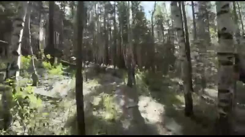 Малый круг 1,5 километра. Золотая тропа. Мегалит Парк Исеть