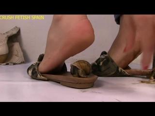 Silvia In shoe Snails