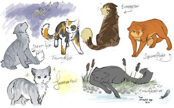 Коты воители картинки самые красивые - 03