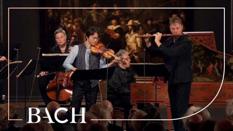 Bach - Brandenburg Concerto No. 5 in D major BWV 1050 - Sato   Netherlands Bach Society