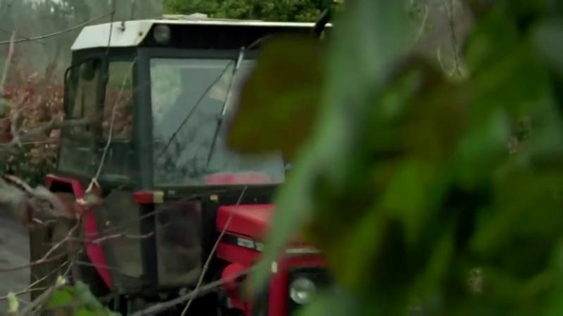 Осознавая связь (фильм про вегетарианство, смотреть всем!)