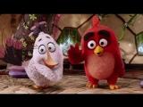 Школа управления своим гневом.(Отрывок из мультфильма: Angry Birds в кино).