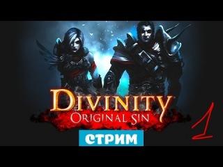 Кооперативный DIVINITY ORIGINAL SIN русский язык #1 СТРИМ