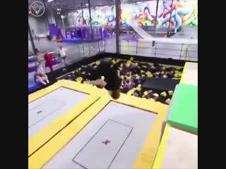 Батутная акробатика