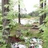 Уборка мусора на карьере в микрорайоне Южный, Всеволожск - 4 августа!