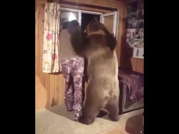 Медведь обнимает человека