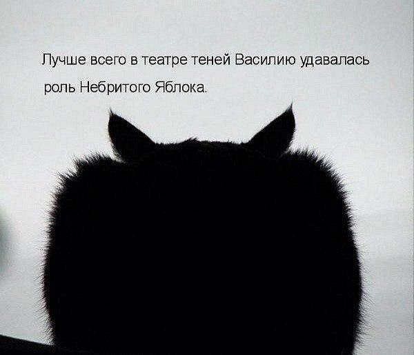http://cs409231.vk.me/v409231660/7779/WXQxEWs_90s.jpg