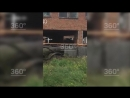 Появилось видео обрушившейся в Иркутской области школы