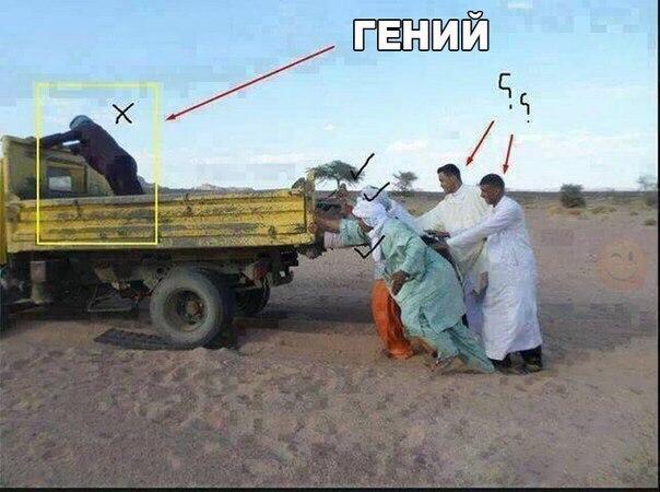 Фото №456251021 со страницы Данияра Мирзакаримова