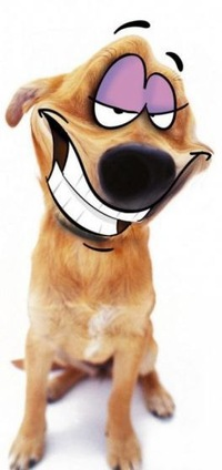 Посмеемся по доброму!