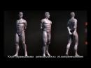 Скульптинг мужского тела в ZBrush