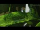 Трейлер Феи: Загадка пиратского острова (2014) -