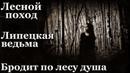 Истории на ночь (3в1): 1.Лесной поход, 2.Липецкая ведьма, 3.Бродит по лесу душа