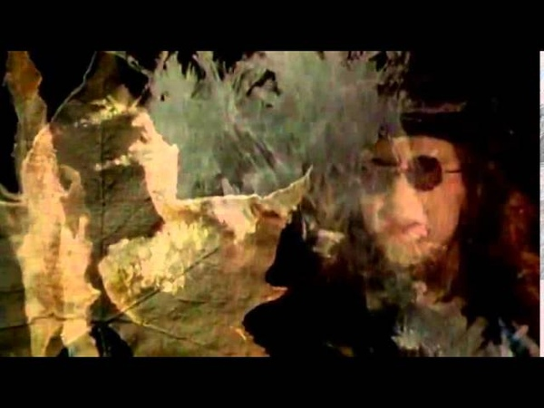 THE MISSION UK - Butterfly On A Wheel [Official Video] HQ