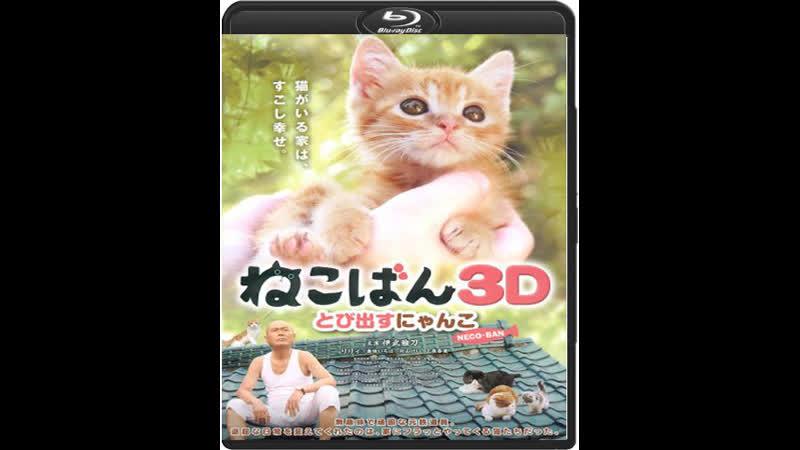 Кошки в твоей жизни / Nekoban: Tobidasu nyanko / Neco-Ban: Cats in Your Life