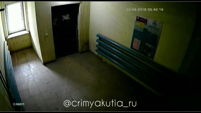 Кража велосипеда в Якутске.22.08.18г