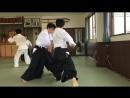 One day practice - Kokyu Nage. Ширакава сенсей