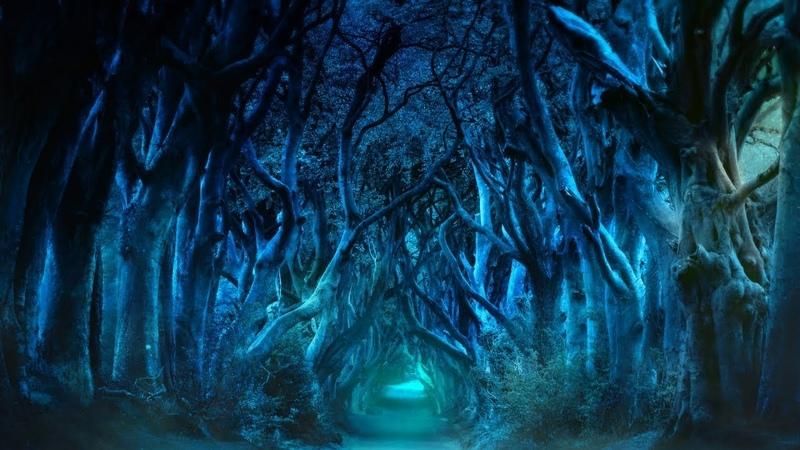 Celtic Fantasy Music – Night Forest   1 hour of celtic fairy music