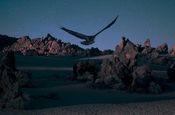 Звёздное небо и космос в картинках - Страница 40 H1AVLOns99s