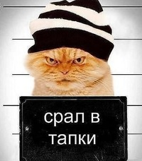 Саша Малеев, 31 марта 1999, Абакан, id194123733