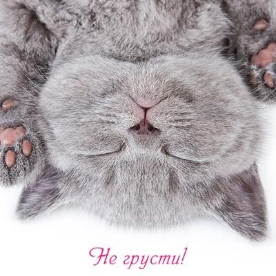 Татьяна Нагаева, 30 октября , Екатеринбург, id204492268