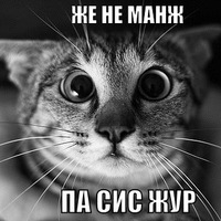 Андрей Михайлов, 10 февраля 1993, Москва, id7864738